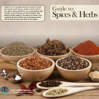 Guide to Spices and Herbs